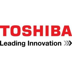 Toshiba Electric Motors